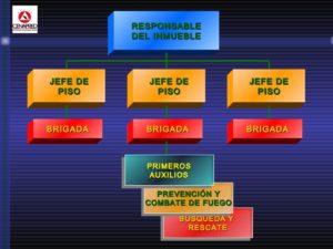 formación de brigadas de protección civil