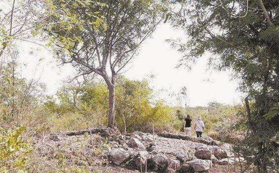 cambios la ruta del Tren Maya por hallazgo de restos arqueologicos
